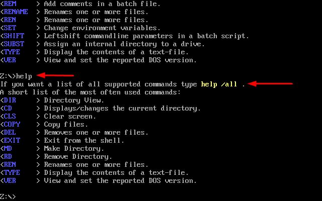 DOSBox и стандартные функции DOS.
